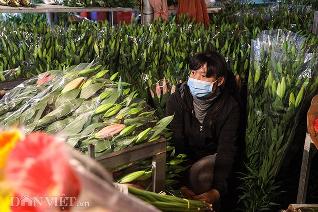 Chợ hoa lớn nhất miền Bắc ế ẩm, người bán buồn bã co ro vì lạnh - Ảnh 6.