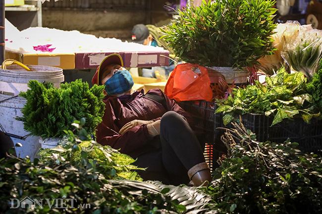 Chợ hoa lớn nhất miền Bắc ế ẩm, người bán buồn bã co ro vì lạnh - Ảnh 8.
