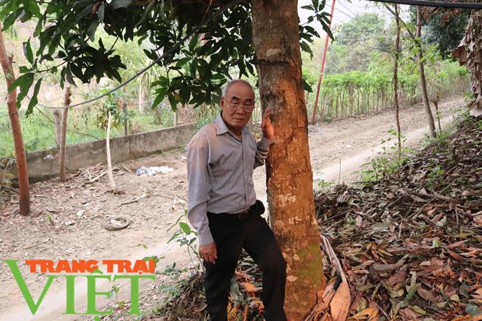Nông thôn mới Sơn La: Lan tỏa phong trào hiến đất làm đường ở Tạ Bú - Ảnh 3.
