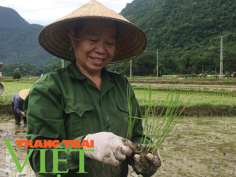 Mai Châu nâng cao nhận thức người dân xây dựng nông thôn mới - Ảnh 8.