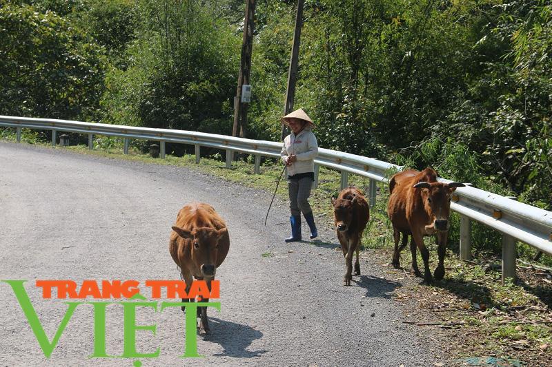 Mai Châu nâng cao nhận thức người dân xây dựng nông thôn mới - Ảnh 4.