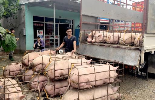 Giá lợn tại các chợ vẫn cao vút, tại sao có sự chênh lệch? - Ảnh 2.