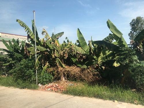 """UBND huyện Kim Động có """"quên"""" chỉ đạo của UBND tỉnh Hưng Yên? - Ảnh 1."""