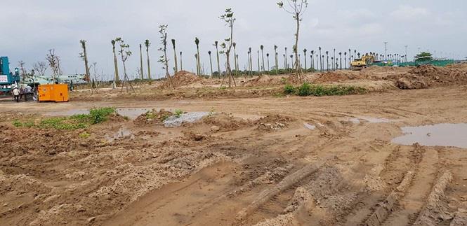 Hưng Yên tiếp tục xử lý loạt DN san lấp trái phép đất trồng lúa - Ảnh 1.