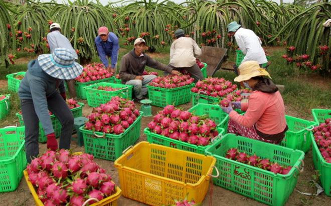 Bộ NNPTNT đề nghị Trung Quốc tạo thuận lợi cho xuất nhập khẩu nông sản