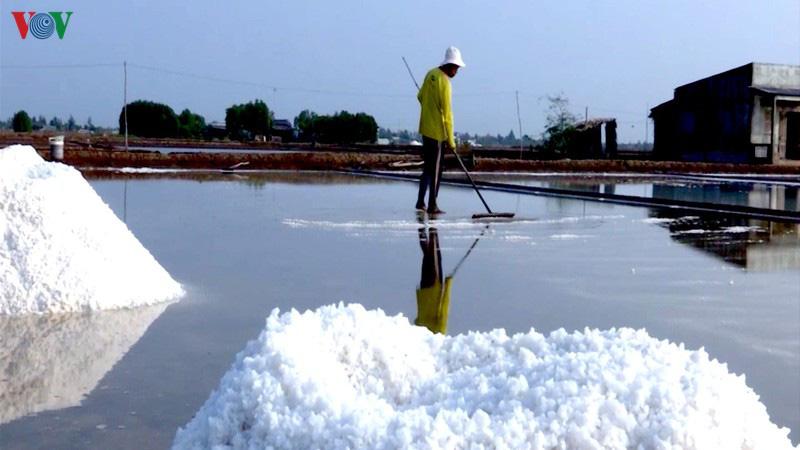 Nắng hạn kéo dài, người làm muối Bạc Liêu trúng mùa - Ảnh 1.