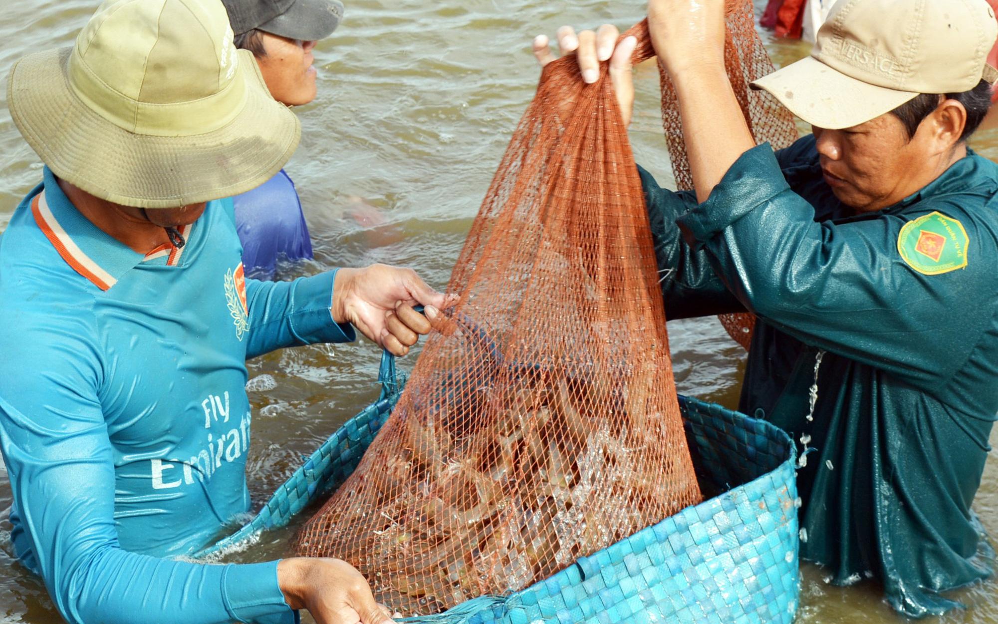 """Ngành tôm Việt đón """"sóng"""" chuyển dịch đầu tư từ Trung Quốc"""