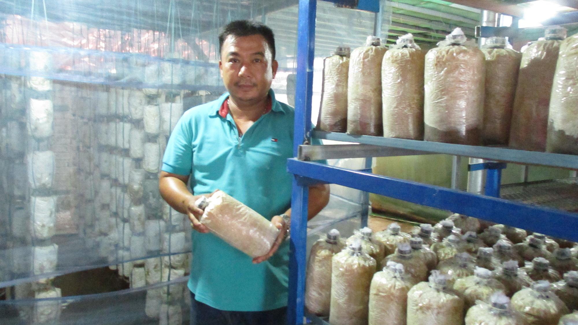 Quảng Nam: U40 xứ Quảng trồng nấm sò thu tiền rủng rỉnh quanh năm - Ảnh 1.