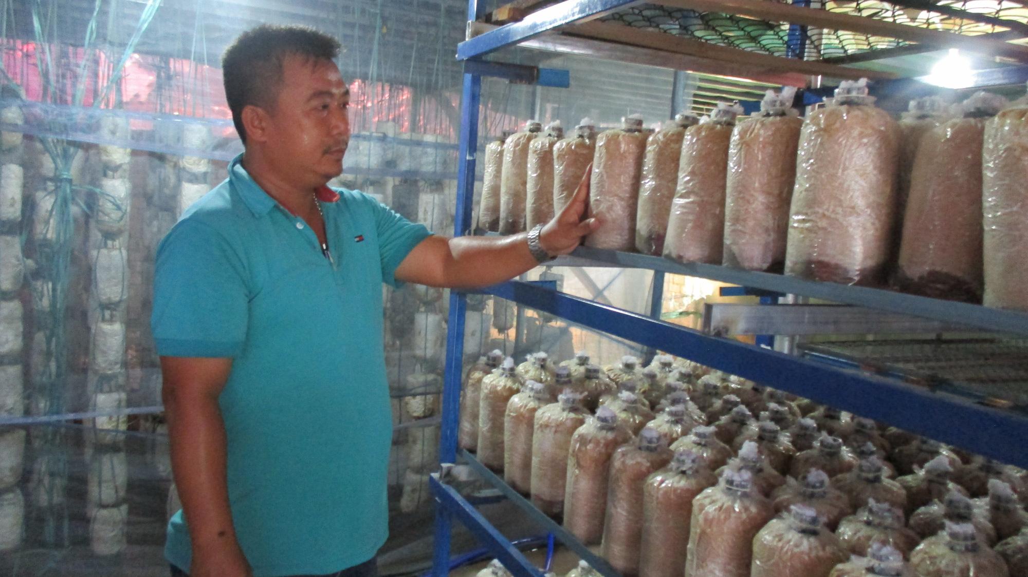 Quảng Nam: U40 xứ Quảng trồng nấm sò thu tiền rủng rỉnh quanh năm - Ảnh 3.