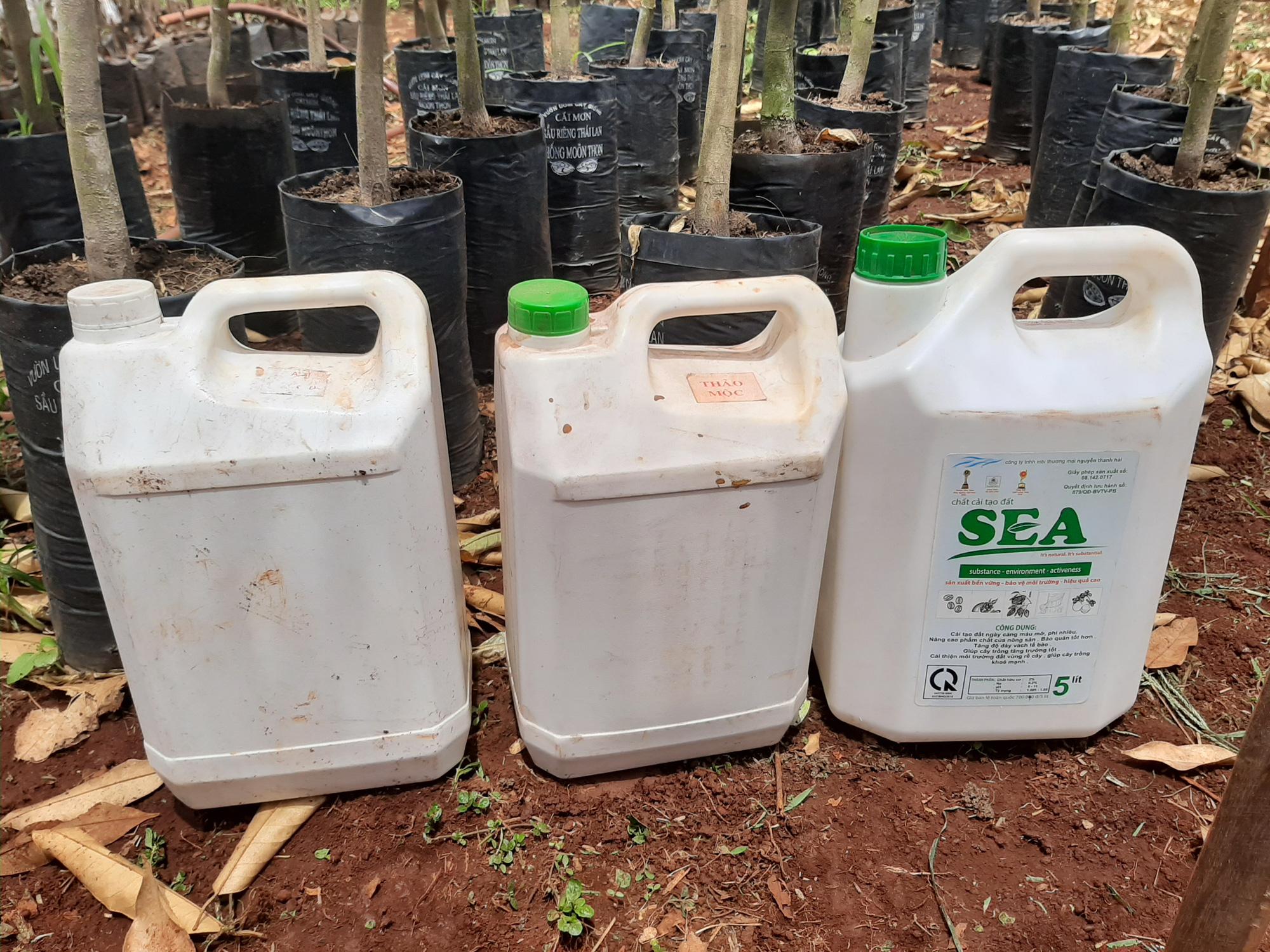 Tây Nguyên:  Cây trồng chết la liệt khi bón phân của Công ty ở TP.HCM - Ảnh 2.