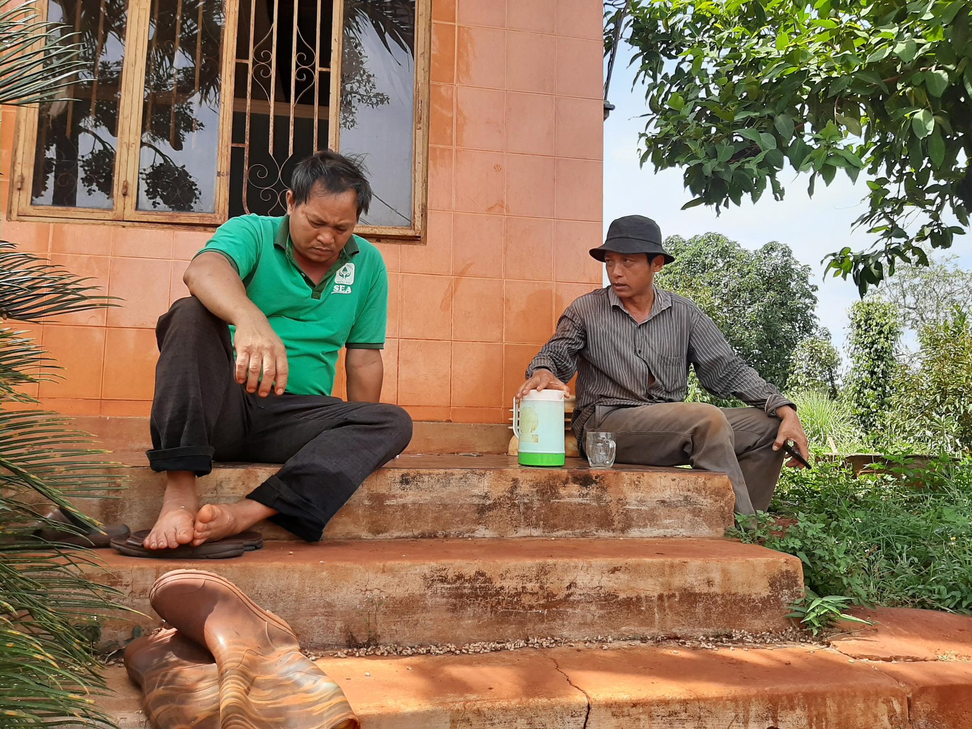 Tây Nguyên: Cây trồng chết la liệt khi bón phân của Công ty ở TP.HCM - Ảnh 1.