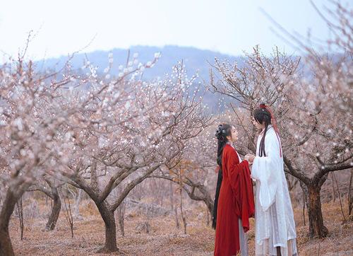 Vợ giả chết thử lòng hai người chồng và cái kết không ai ngờ  - Ảnh 1.