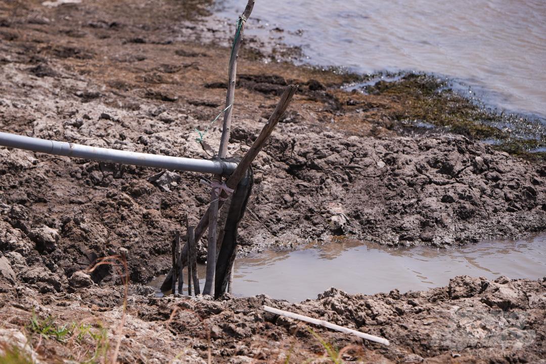 Hồ nước ngọt lớn nhất miền Tây cạn rặc, dân xuống mò cua bắt ốc kiếm sống qua ngày - Ảnh 3.