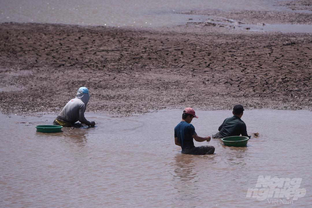 Hồ nước ngọt lớn nhất miền Tây cạn rặc, dân xuống mò cua bắt ốc kiếm sống qua ngày - Ảnh 4.