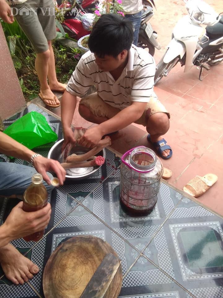 Bỏ công nhân về nuôi hươu lấy nhung, 9X Bắc Giang có thu nhập 200 triệu/năm  - Ảnh 5.