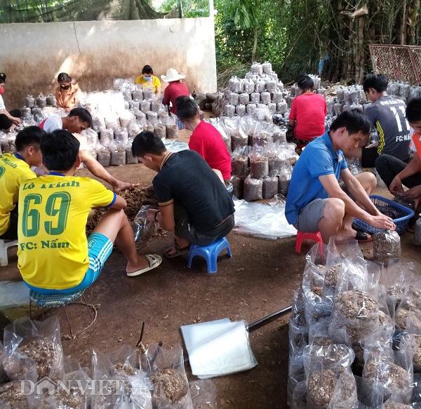 Thu gần 10 triệu đồng mỗi ngày nhờ trồng nấm - Ảnh 10.