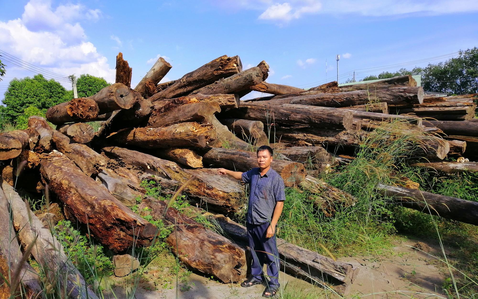 """Bình Phước kiểm tra dự án """"khủng"""" bảo vệ rừng bị tố có nhiều sai phạm"""