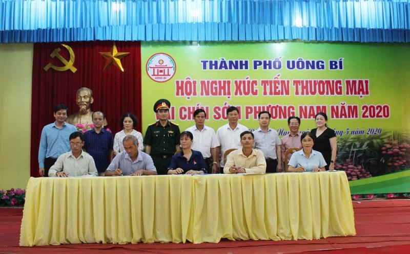 Quảng Ninh: Chi hàng chục tỷ cho thương hiệu Vải chín sớm, nhưng ra chợ phải đeo mác khác - Ảnh 6.