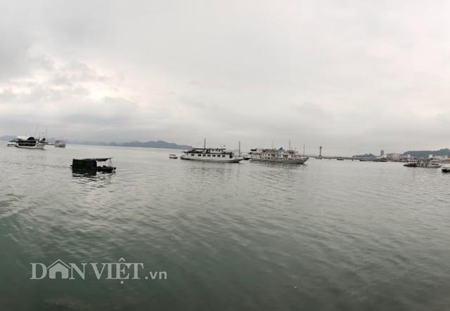 """Chủ tịch Quảng Ninh: Sẽ đồng hành gỡ khó cho doanh nghiệp sau """"cơn bão"""" Covid-19  - Ảnh 1."""