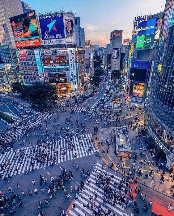 Sốc: Tỷ lệ người tự sát ở Nhật giảm 20% trong thời gian dịch bệnh, thấp nhất trong 5 năm trở lại đây! - Ảnh 3.