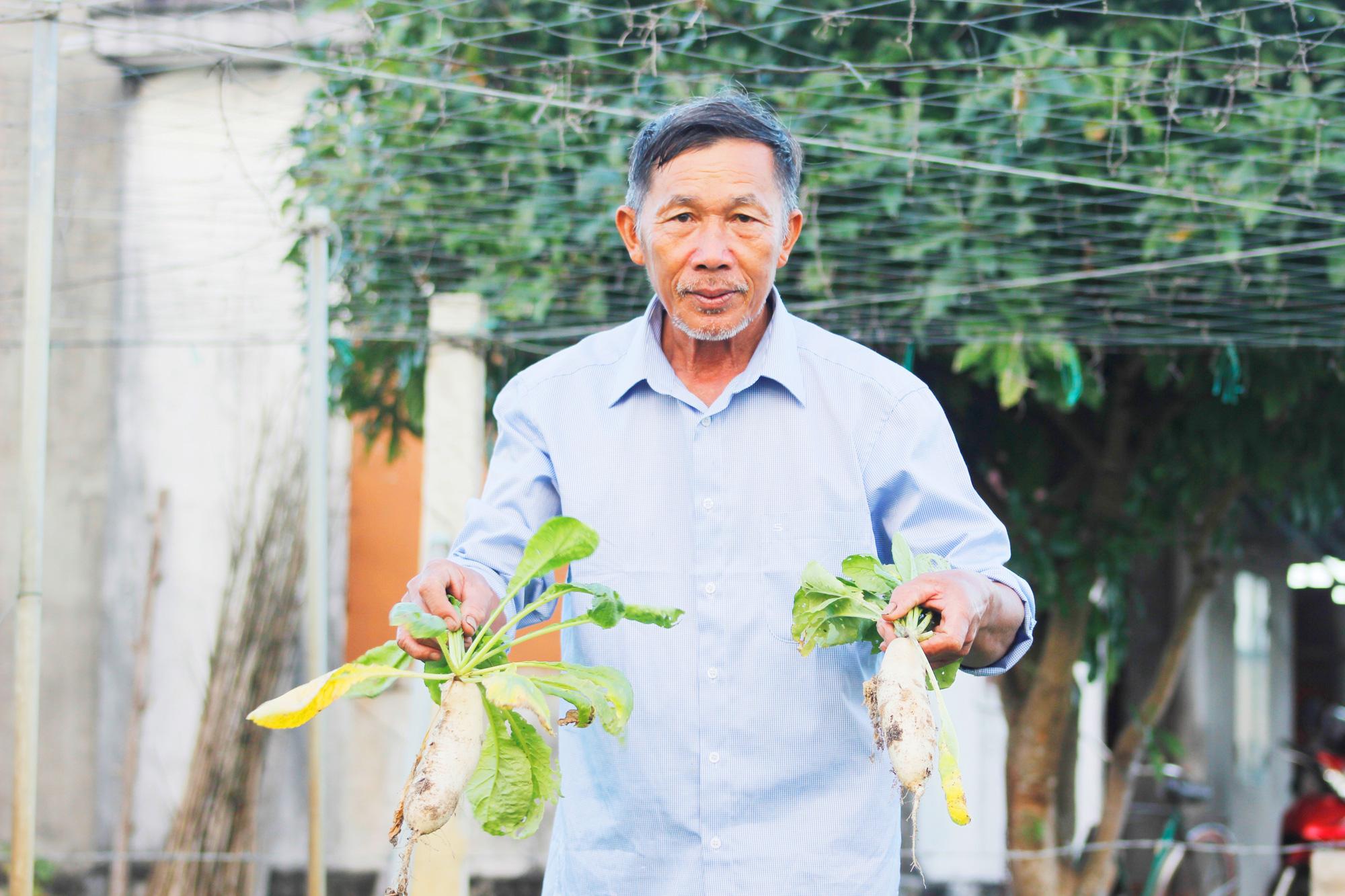 Quảng Bình: Hai bố con trồng rau sạch cung cấp cho trường học - Ảnh 3.