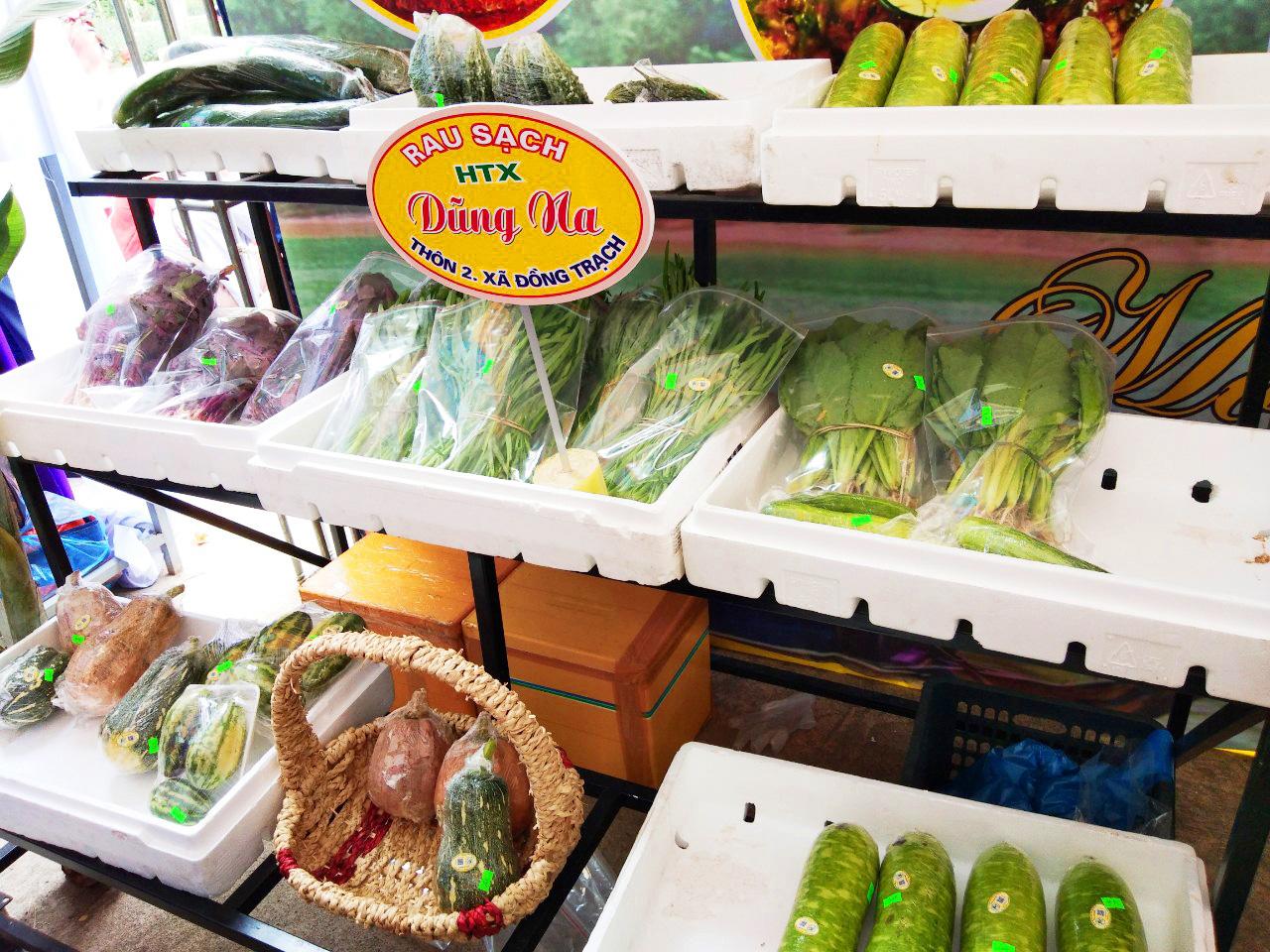 Quảng Bình: Hai bố con trồng rau sạch cung cấp cho trường học - Ảnh 5.