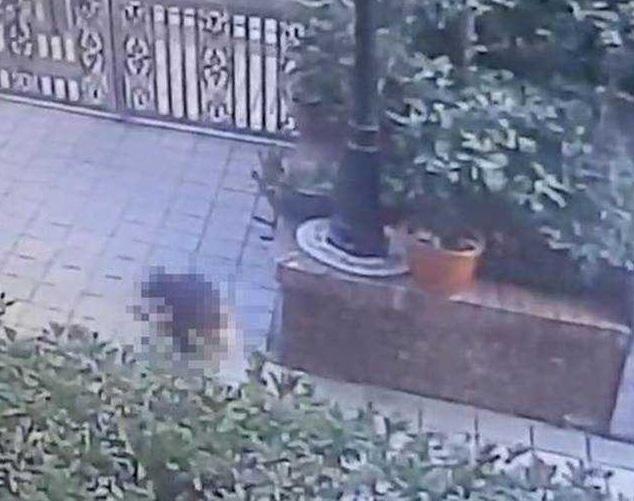 Hi hữu bé gái rơi từ tầng 14 xuống may mắn thoát chết, tự mình đứng dậy, bấm thang máy về nhà - Ảnh 1.