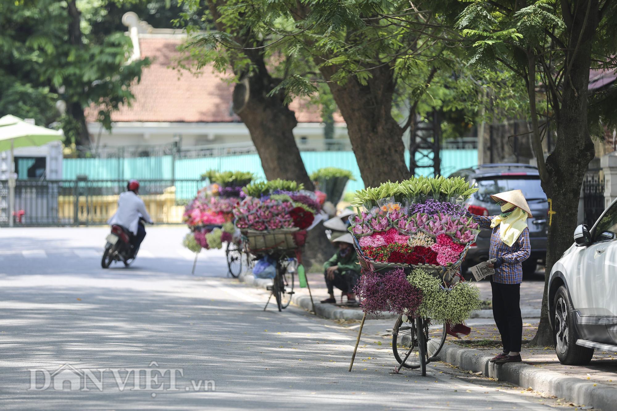 Sen đầu mua khoe sắc, len lỏi khắp phố phường Hà Nội - Ảnh 1.