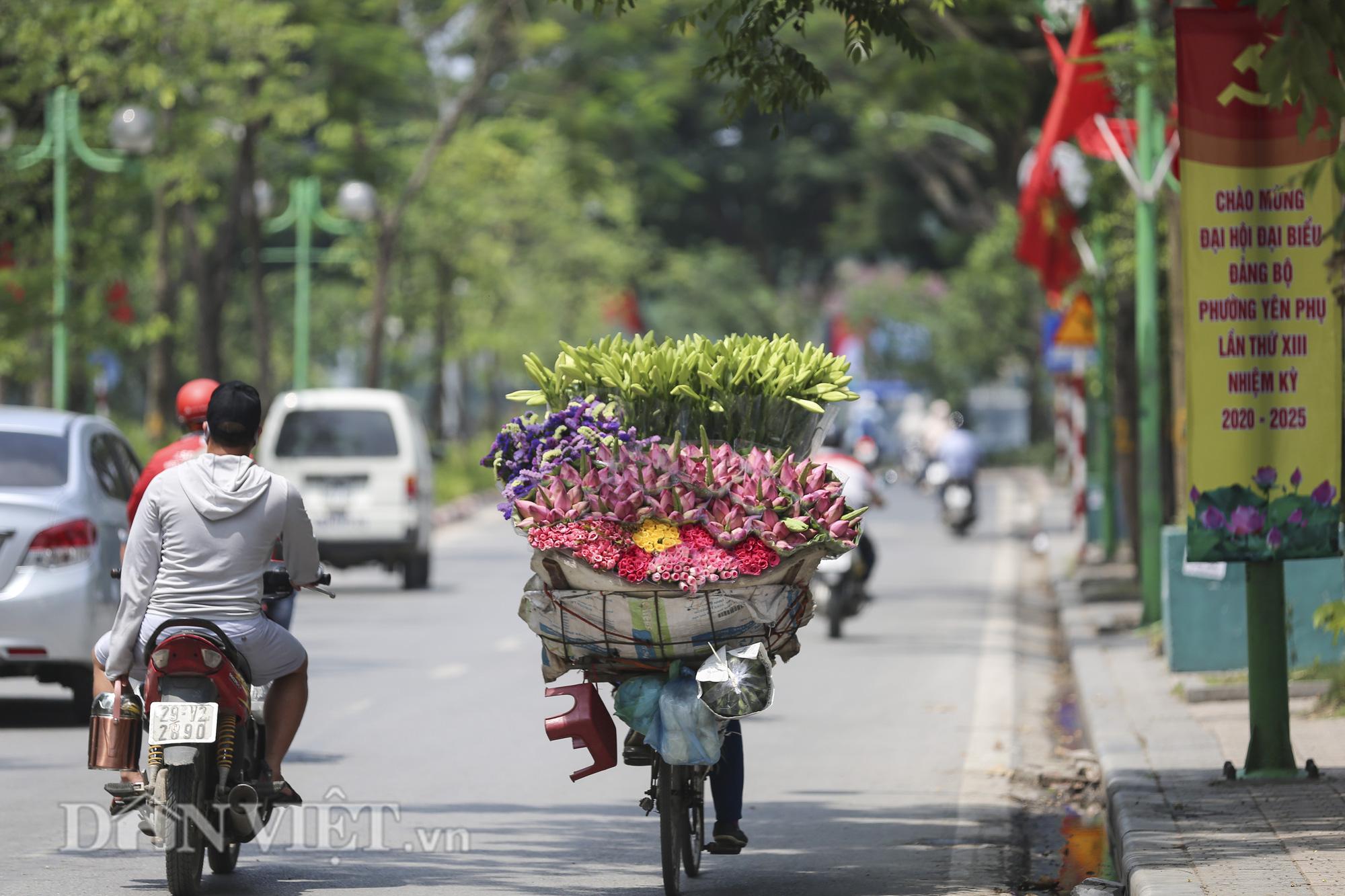 Sen đầu mua khoe sắc, len lỏi khắp phố phường Hà Nội - Ảnh 12.