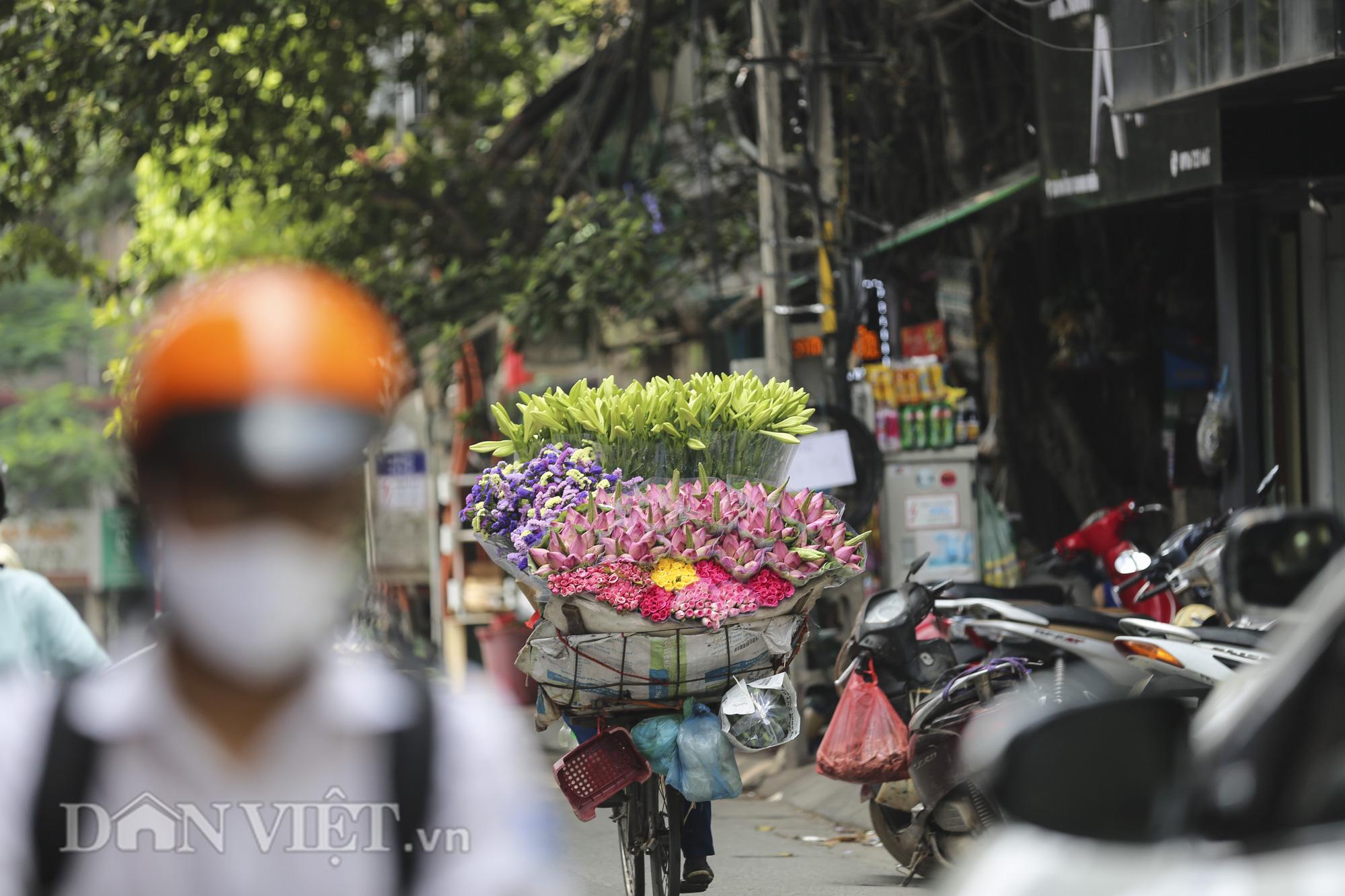 Sen đầu mua khoe sắc, len lỏi khắp phố phường Hà Nội - Ảnh 4.
