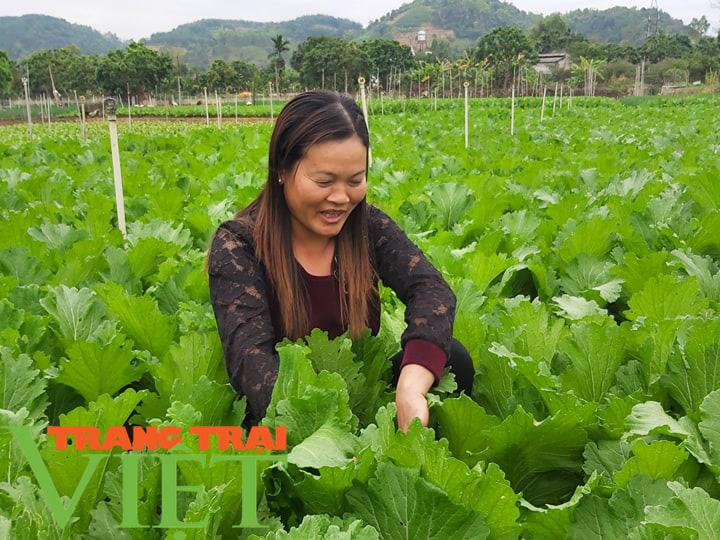 Mai Sơn đẩy mạnh phát triển sản xuất nông nghiệp hàng hoá  - Ảnh 1.