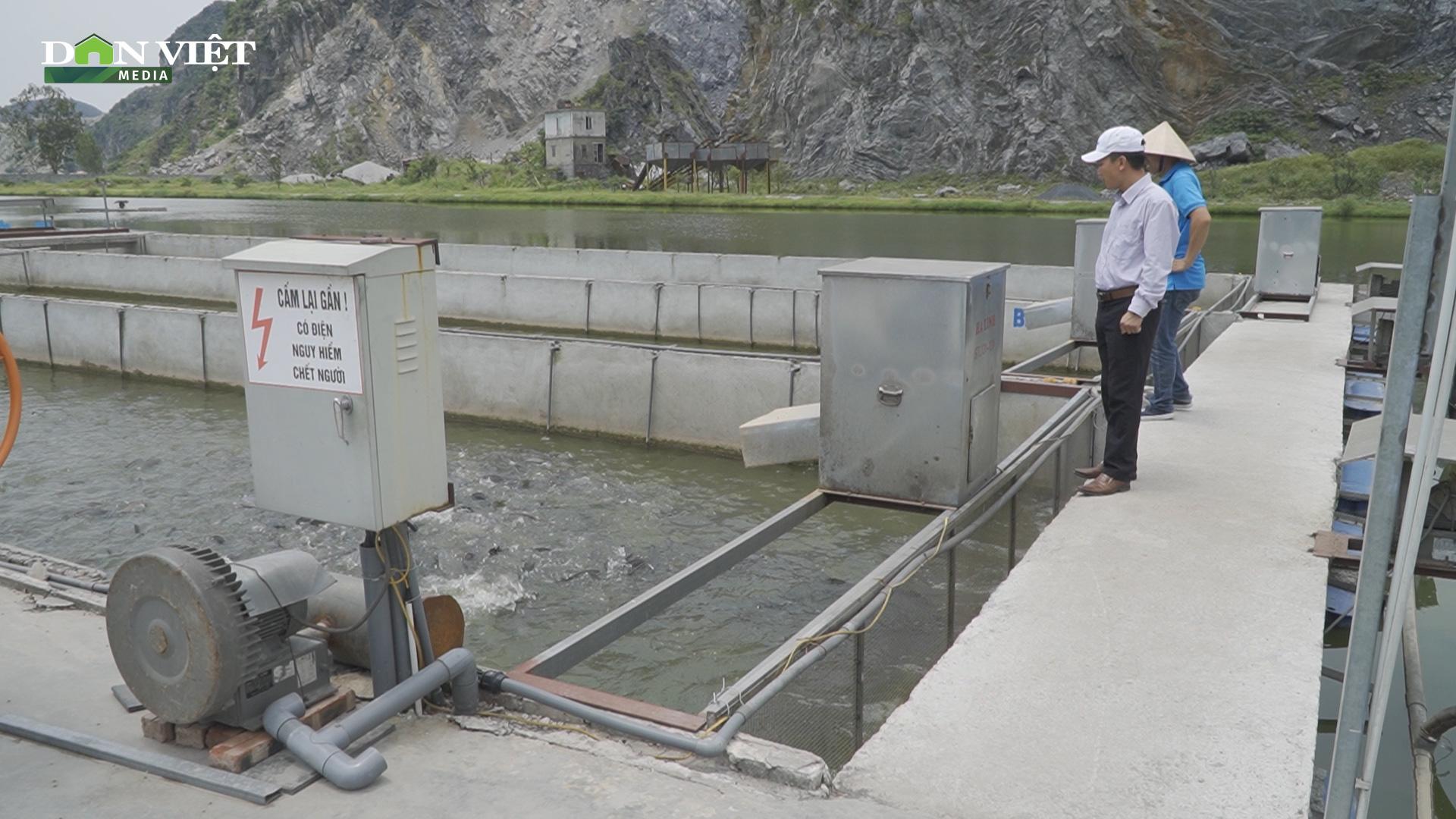 """Mô hình nuôi cá """"sông trong ao"""" cho thu nhập cao"""