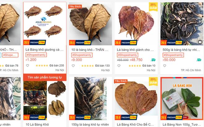 Lá bàng khô được rao bán rầm rộ, giá 1.000 đồng/lá