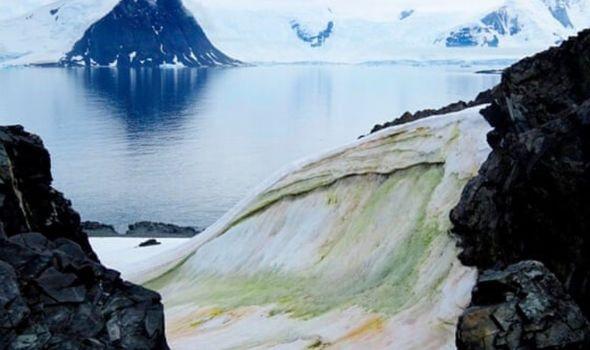 Băng tuyết Nam cực chuyển màu xanh, lời cảnh báo sốc cho nhân loại - Ảnh 1.