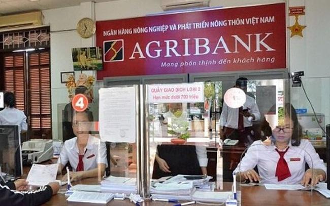 """Tăng vốn cho Agribank thay vì """"ném"""" tiền ngân sách vào dự án thua lỗ nghìn tỷ - Ảnh 2."""