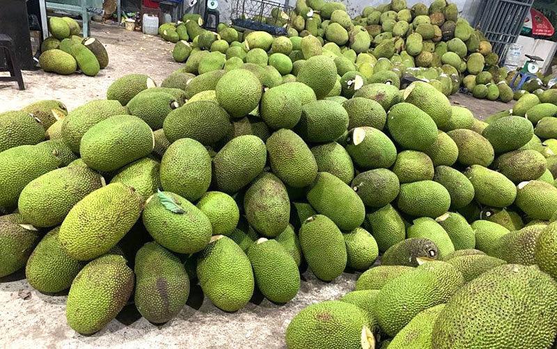 Bòn bon 2 ngàn/kg, mít Thái 4 ngàn/kg, trái cây chưa bao giờ rẻ thế - Ảnh 3.
