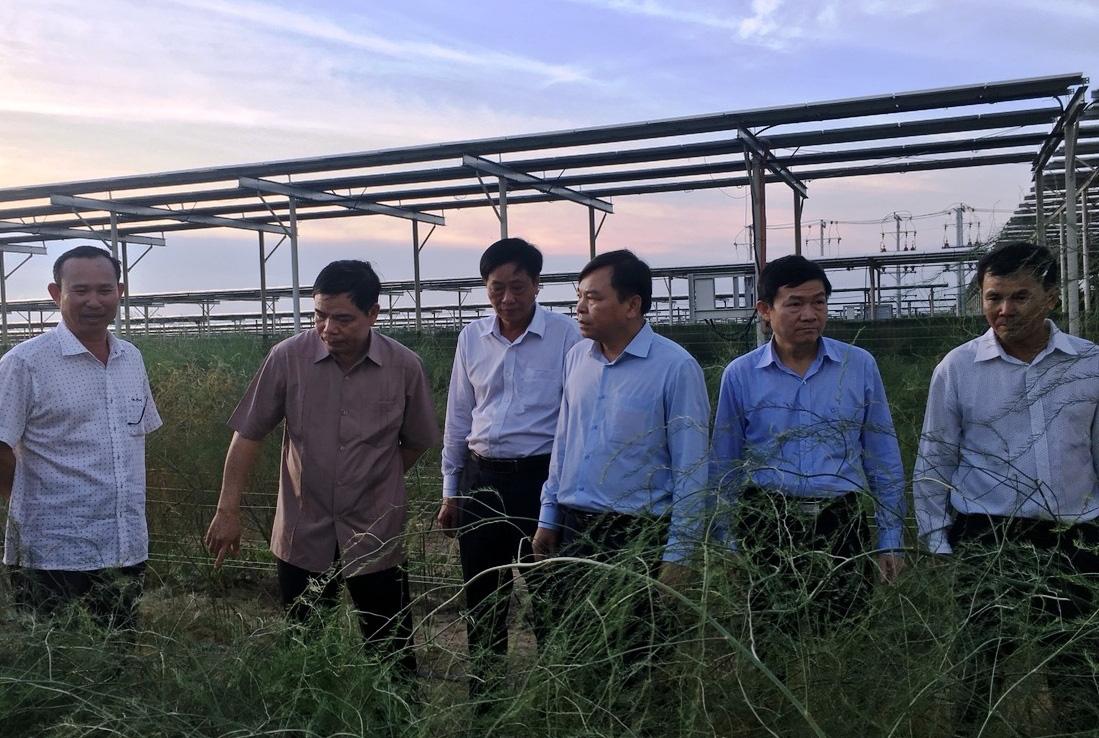 Ninh Thuận: Biến tài nguyên nắng nóng để tổ chức ra sản phẩm hàng hóa - Ảnh 2.