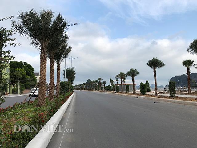 Thủ tướng cắt băng khánh thành đường bao biển bên bờ vịnh Hạ Long - Ảnh 3.