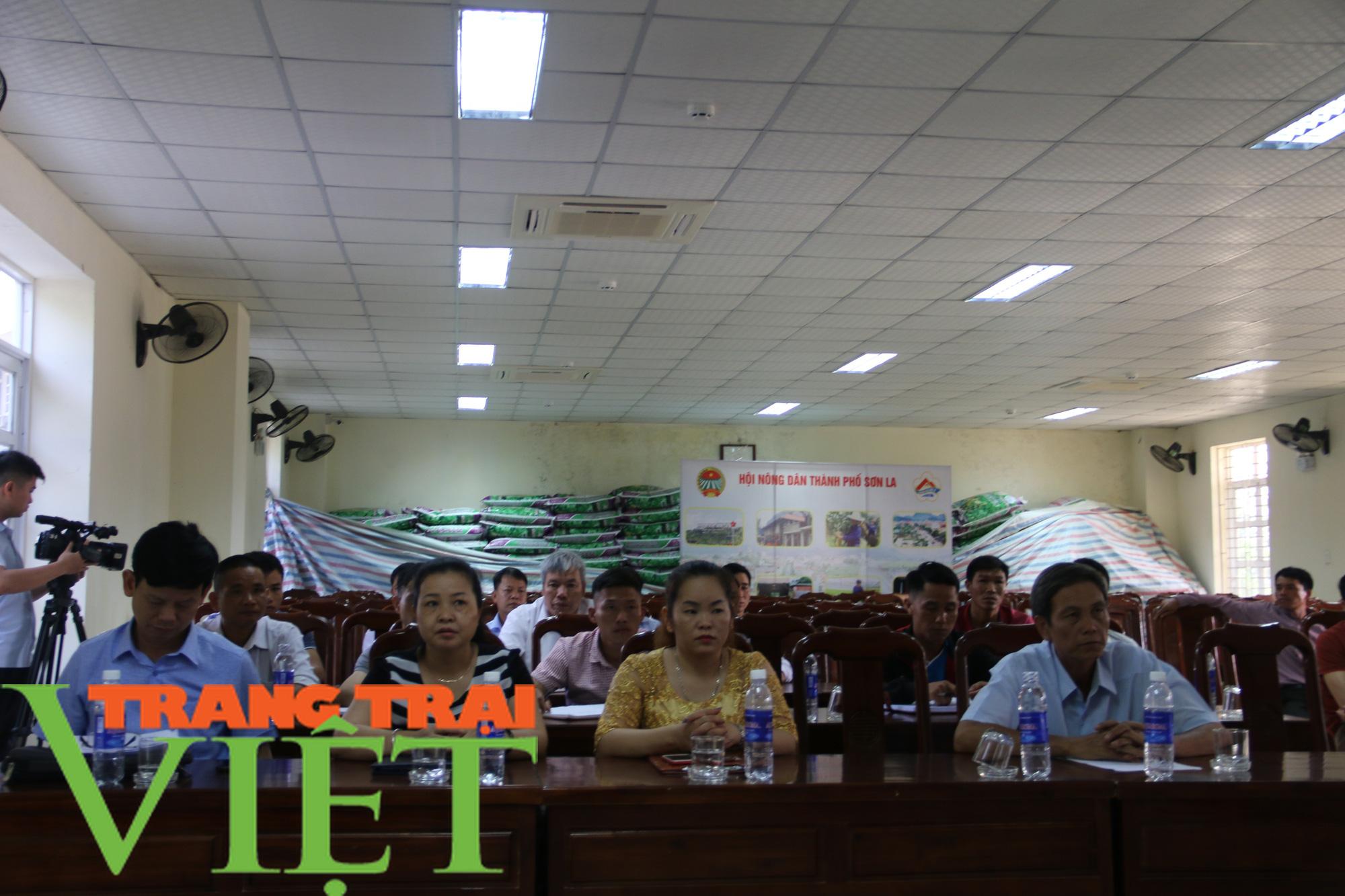 Hội Nông dân Sơn La: Tập huấn đào tạo nông dân thành Tập huấn viên - Ảnh 1.