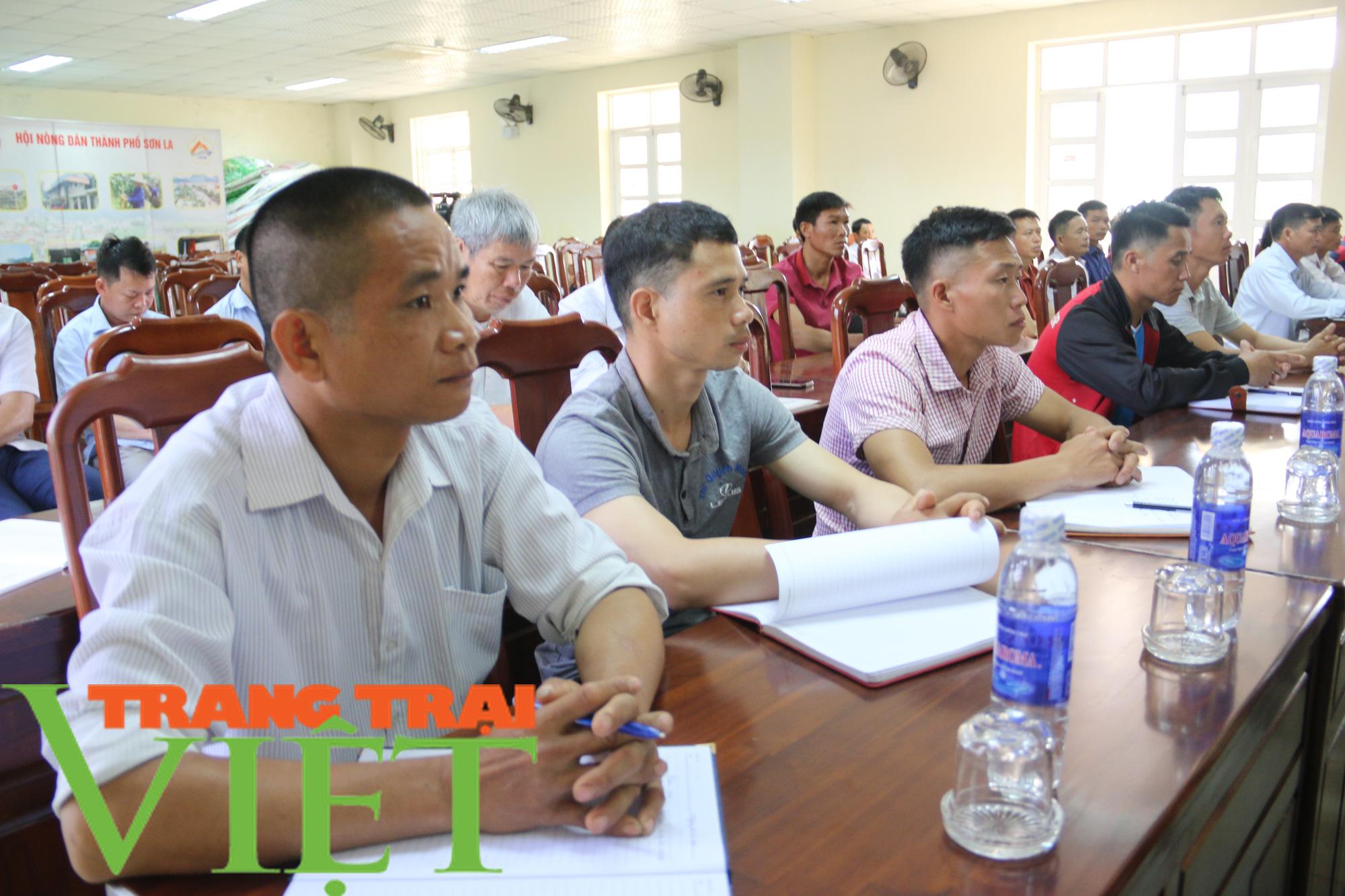 Hội Nông dân Sơn La: Tập huấn đào tạo nông dân thành Tập huấn viên - Ảnh 5.