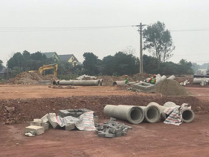 Chưa được giao đất, chủ đầu tư dự án Canary City đã ký hợp đồng 'bán nhà trong tương lai'  - Ảnh 1.