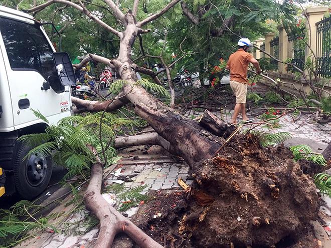 Tin tức 24h qua:Vỡ đập ở Phú Thọ, nhiều hộ dân sơ tán khẩn cấp - Ảnh 2.