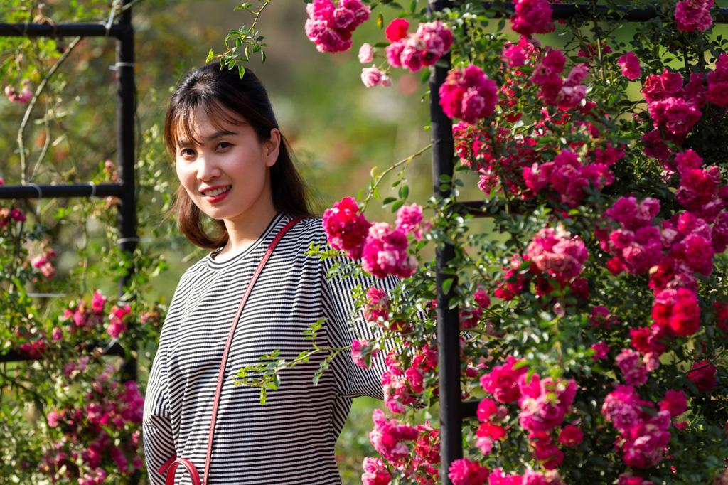 Lạc giữa thung lũng hoa lớn nhất Việt Nam ở Sa Pa - Ảnh 4.
