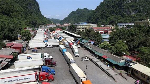Đề nghị Trung Quốc tăng số tàu hàng chuyên dụng nhập nông sản Việt Nam - Ảnh 1.