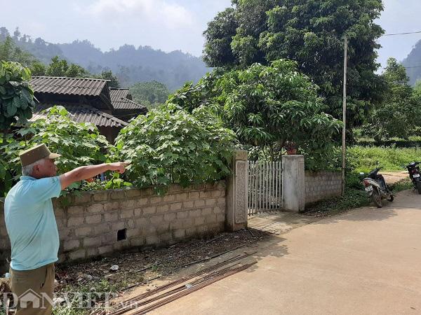 """Phú Thọ: Dân """"sập bẫy"""" tại dự án trong Vườn Quốc gia Xuân Sơn - Ảnh 2."""