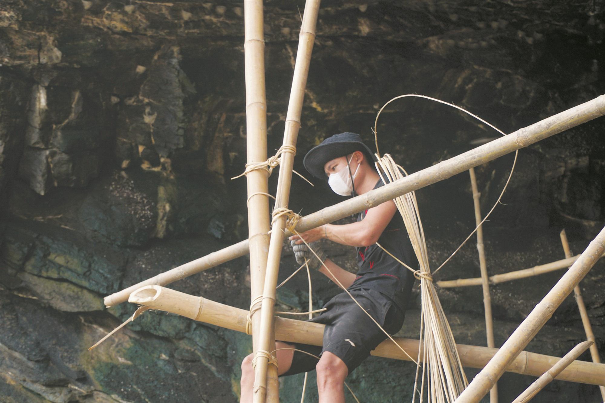 Quảng Nam: Sống đời cheo leo vách núi chăm chim tiền tỷ ở biển Cù Lao Chàm - Ảnh 1.