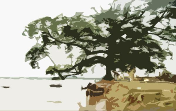 Truyện dự thi: Bóng đa ven sông - Ảnh 1.