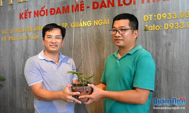 Quảng Nam: Choáng với giò lan phi điệp Hồng Minh Châu mua 13 triệu chưa đầy năm bán 580 triệu - Ảnh 1.