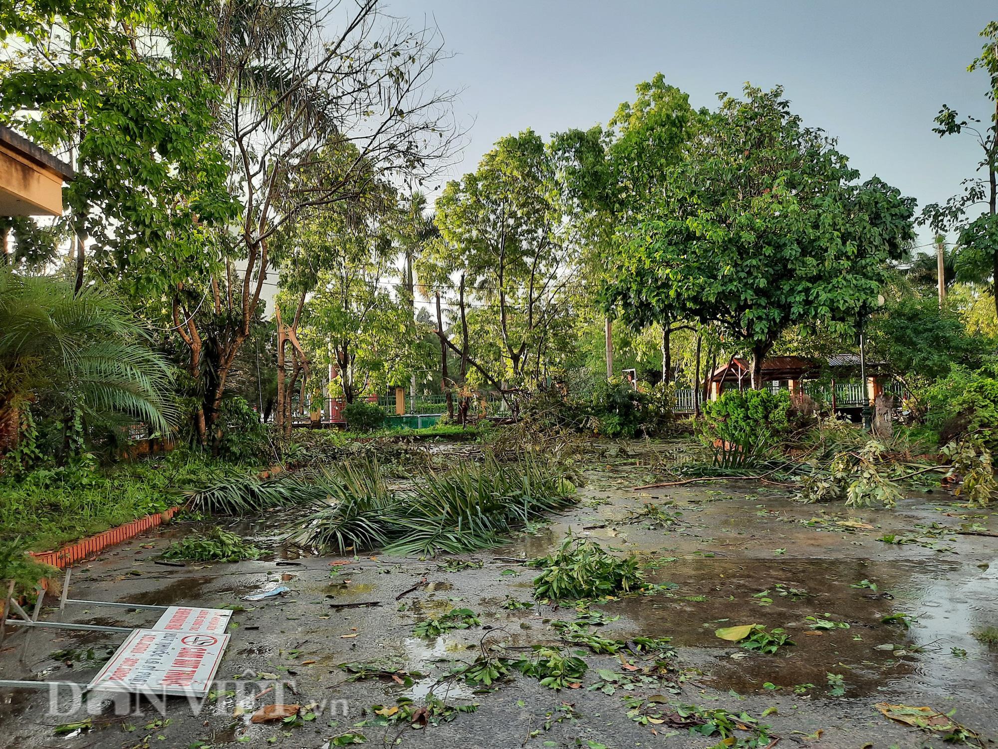 Hòa Bình: Mưa lớn kèm theo dông lốc làm tốc mái, đổ cây - Ảnh 2.