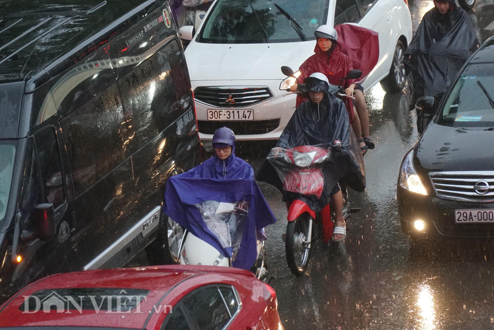 Hà Nội giảm 10 độ sau cơn mưa vàng - Ảnh 4.